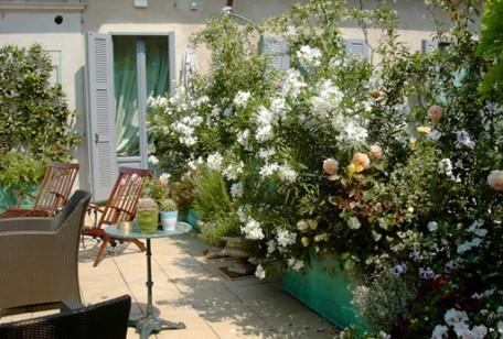 Arredare il terrazzo con le piante. gallery of vasi piante e