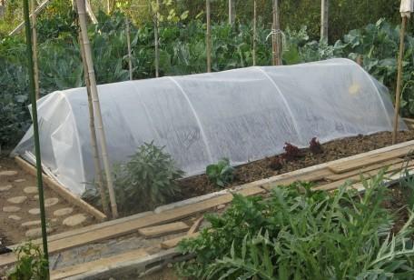 Come proteggere l'orto dalla grandine