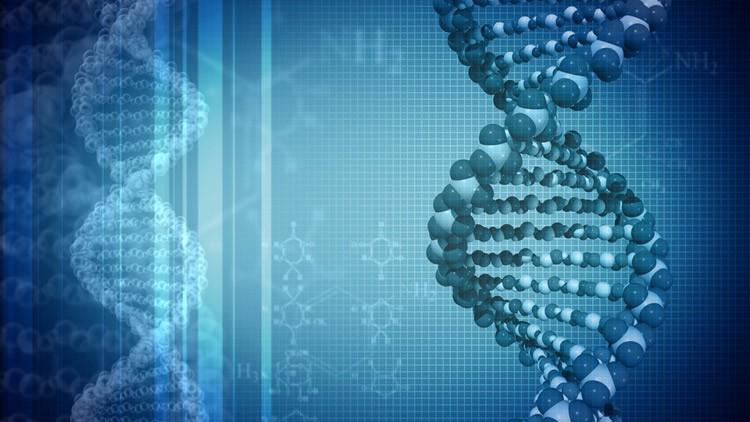 gene-DRD4